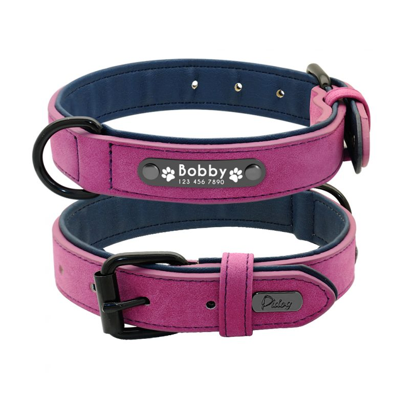 front and back dog leather collar
