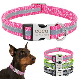 Dog's Reflective Detail Printed Collar